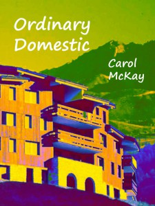 The cover of Ordinary Domestic